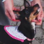 Tutorial: come cucire una bandana per cani