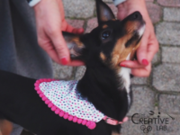 tutorial come fare bandana per cani