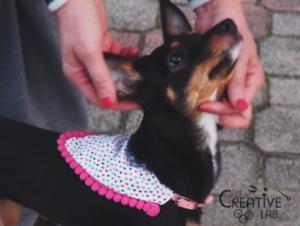 tutorial come fare bandana per cani